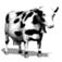 Pet Me Cow
